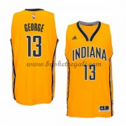 Maglie Basket NBA Indiana Pacers Uomo 2015-16 Paul George 13# Alternate Swingman..